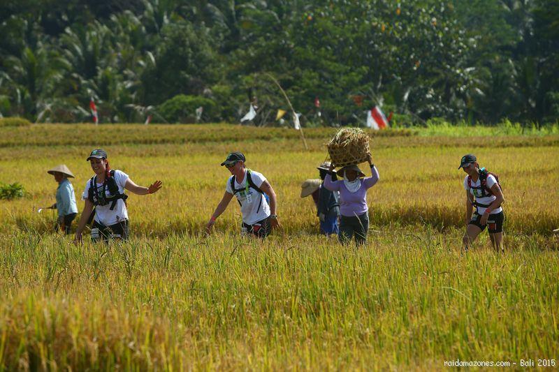 Team 55 / Raid l'Arbre Vert Amazones Bali