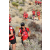 Team 26 / Raid Amazones Californie - J5 Trek