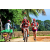 Team 109 / Raid Amazones Sri Lanka 2018 - J5 Bike and Run