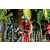 Team 101 / Raid Amazones Sri Lanka 2018 - J5 Bike and Run