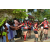 Team 24 / Raid Amazones Sri Lanka 2019 - J5 Bike and Run